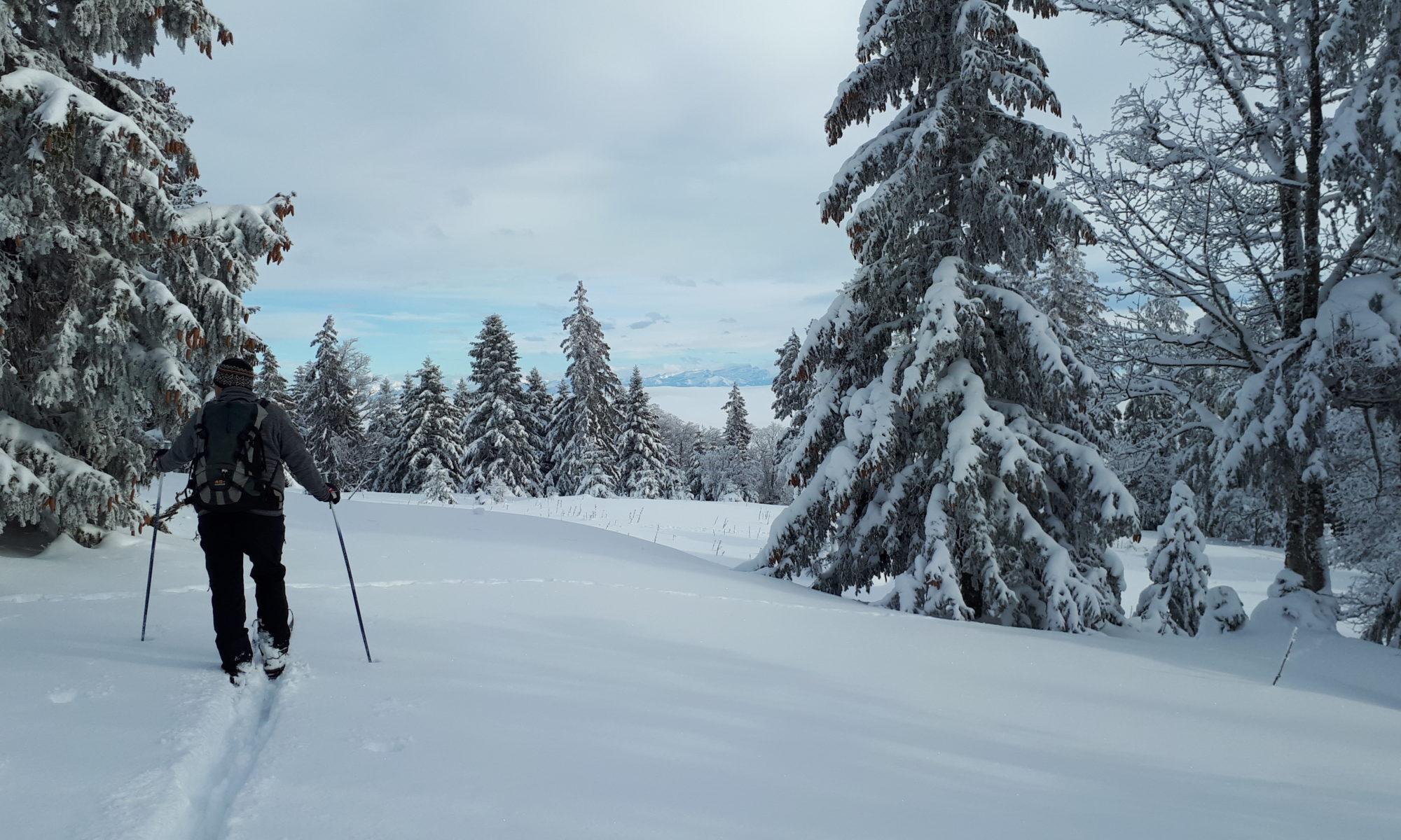Ski de randonnée nordique dans le Par jurassien vaudois